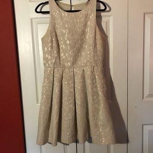 Beautiful Taylor Fit & Flare Dress w/pockets!  12